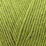 Bamboo Verdi