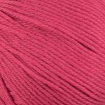 Yarn Stories Penstemon