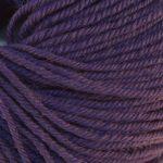 Regina 73 Purple